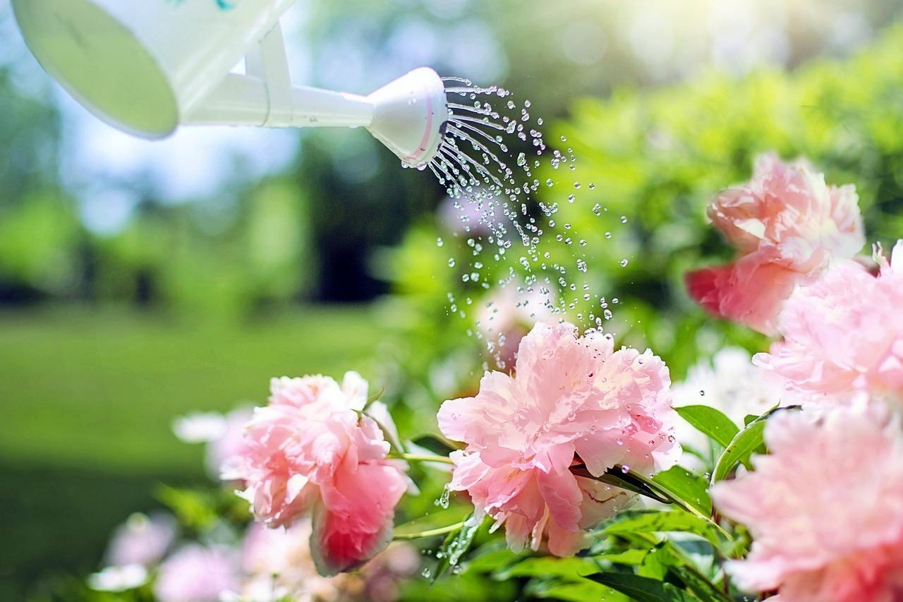 Economizar água é gastar menos dinheiro e preservar os recursos naturais